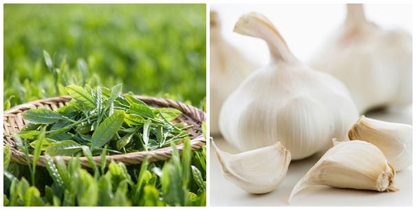 Những cách trị mụn thịt đơn giản bằng trà xanh và tỏi